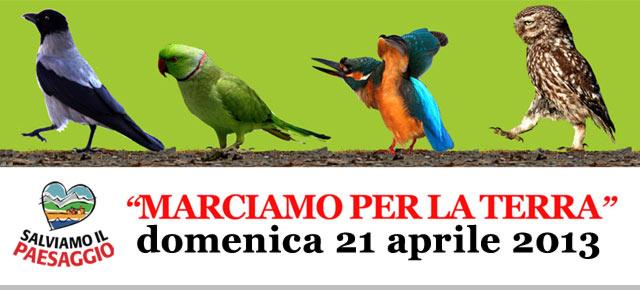 20130328_marciaperlaterra