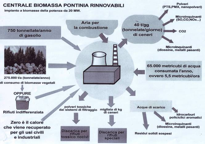 schemaPontinia