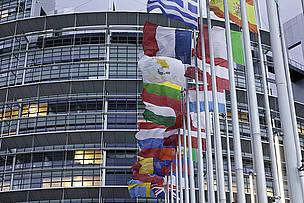 europarlamento_eu_flags_ep__strasbourg_fotofrank_paul_wwf_canon_3773